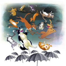 Raining-CatsDogs
